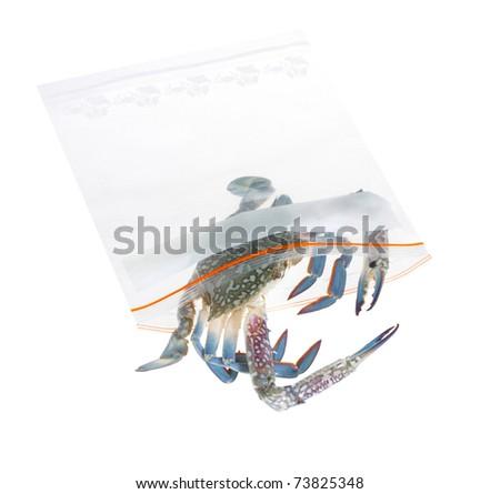 czyste · podpisania · recyklingu · symbol · płótnie - zdjęcia stock © johnkasawa