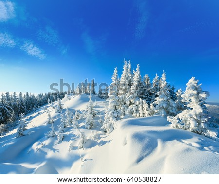 winter snow covered fir trees on mountainside on blue sky background Stock photo © zurijeta