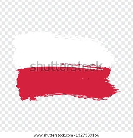 Flag of Poland vector illustration isolated on modern background with shadow. Stock photo © kyryloff
