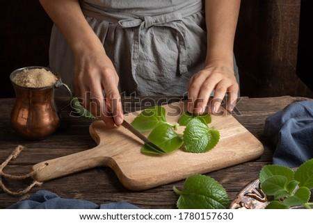 preparación · plata · jarabe · frescos · hojas · casero - foto stock © madeleine_steinbach