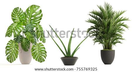 Folhas pote ilustração primavera natureza papel de parede Foto stock © lenm