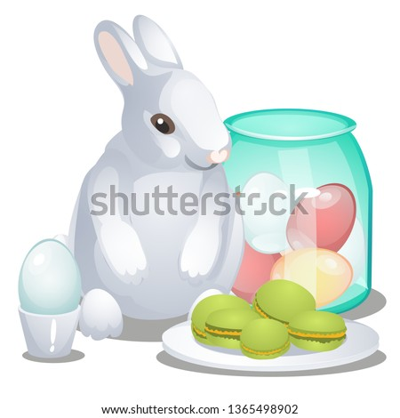 Easter bunny, colorful eggs and macaroni cakes isolated on white background. Vector cartoon close-up ストックフォト © Lady-Luck
