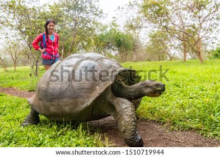 óriás teknősbéka turista nő mikulás sziget Stock fotó © Maridav