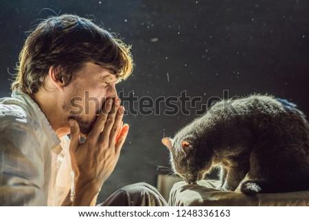 Człowiek uczulony kot fakt domowych medycznych Zdjęcia stock © galitskaya