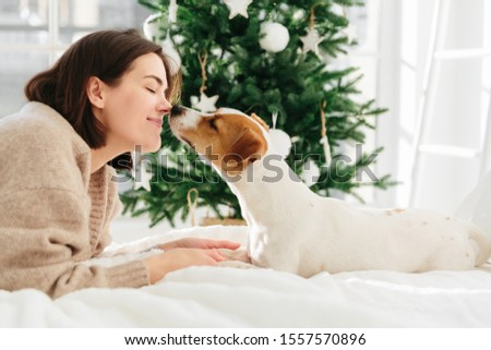Cheerful woman gets kiss from favourite dog, keeps eyes closed from pleasure, lie on bed against Chr Stock photo © vkstudio