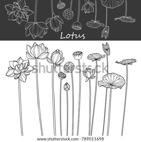 Tuinieren vector doodle lijn kunst clip art Stockfoto © foxbiz
