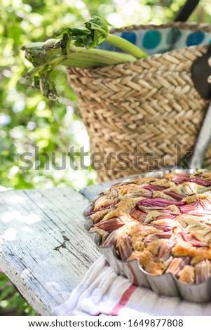 Saboroso caseiro ruibarbo cesta Foto stock © laciatek