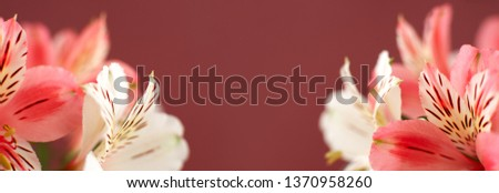 Summer green with white flowers. Panoramic composition in high r Stock photo © moses