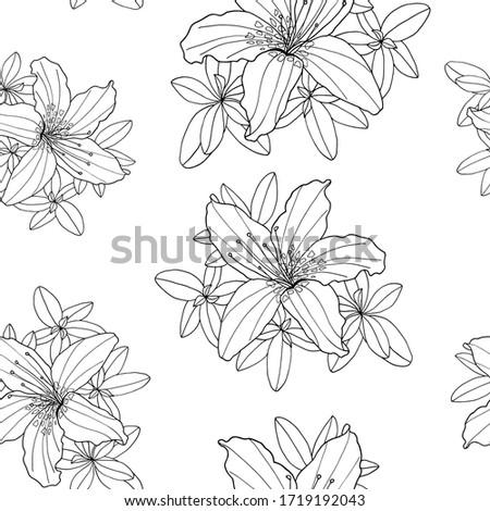 illusztráció · azálea · virág · absztrakt · természet · növény - stock fotó © isveta