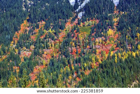fall colors mountain sides forest stevens pass leavenworth washi stock photo © billperry