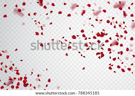 beautiful hearts of red and pink rose petals isolated on white stock photo © tetkoren