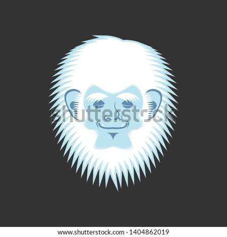 fej · kabala · ikon · illusztráció · hóember · mitikus - stock fotó © popaukropa