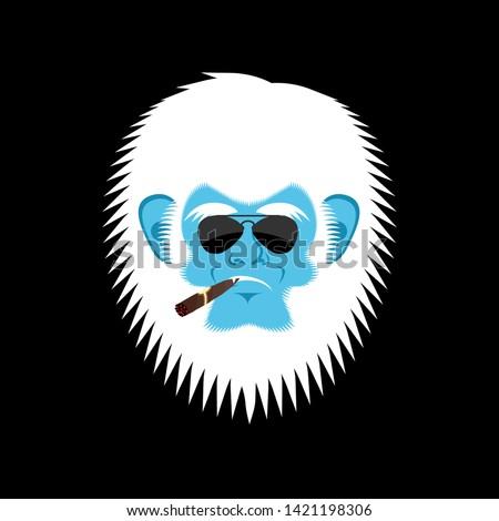 Sérieux bonhomme de neige cigare émotion visage oeil Photo stock © popaukropa