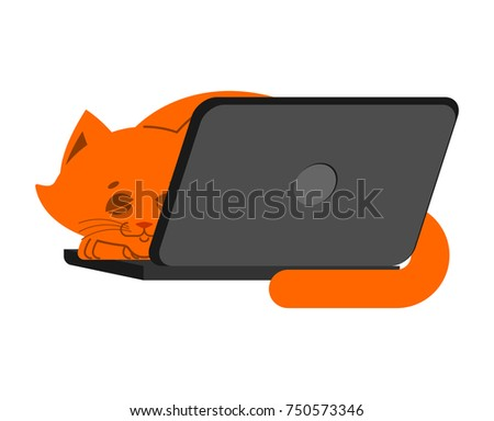 Cat and laptop. Home pet and keyboard. Does not work. Vector ill Stock photo © popaukropa
