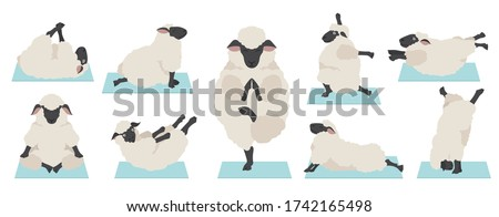 Ram yoga. Sheep Farm Animal yogi isolated. Relaxation and medita Stock photo © popaukropa