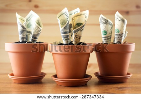 Dollar banknotes cash money in soil ground, income in agricultur Stock photo © stevanovicigor