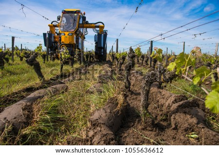 Agricultural machine tractor plowing in a vineyard between the r Stock photo © FreeProd