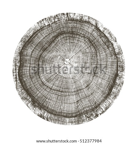 Vector tree Ring Wood log. Cut trees, isolated on white background. Vector illustration in flat styl Stock photo © MarySan