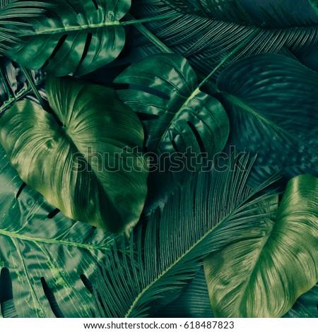 Palma folhas verdes padrão criador naturalismo traçado Foto stock © artjazz