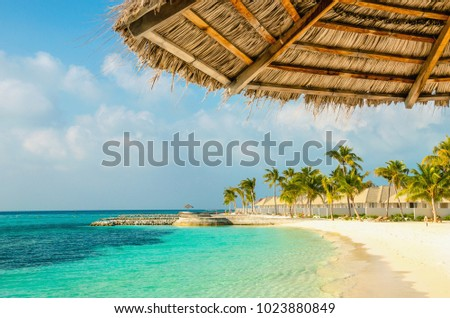 güneş · şemsiyesi · plaj · tropikal · şemsiye · yatak · palmiye · ağaçları - stok fotoğraf © tanach