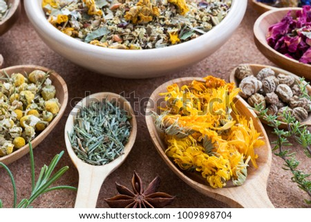 Dried calendula on a wooden spoon, with other herbs in the background Stock photo © madeleine_steinbach