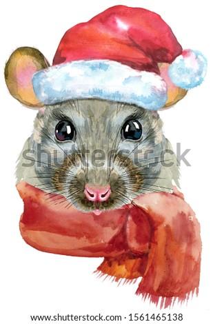акварель портрет крыса Hat Сток-фото © Natalia_1947