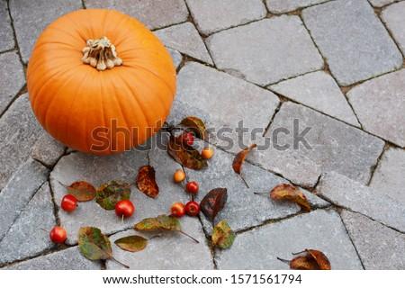 большой тыква красный краба яблоки листьев Сток-фото © sarahdoow
