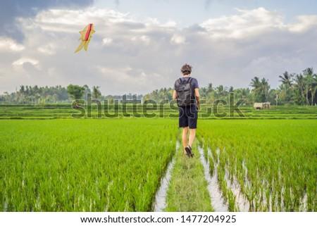 Homem pipa arrozal bali ilha Foto stock © galitskaya