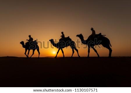 Três camelo camelos viajar deserto paisagem Foto stock © dmitry_rukhlenko