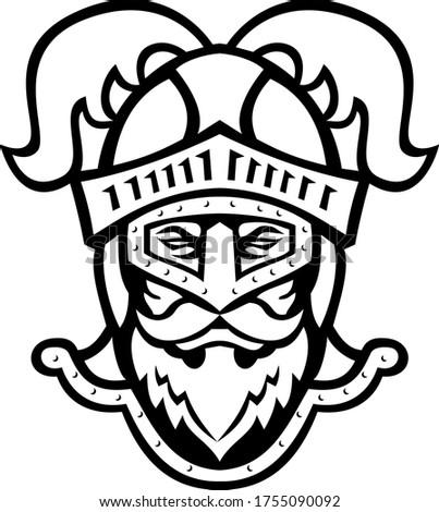 Lovag fej visel sisak strucc tollazat Stock fotó © patrimonio