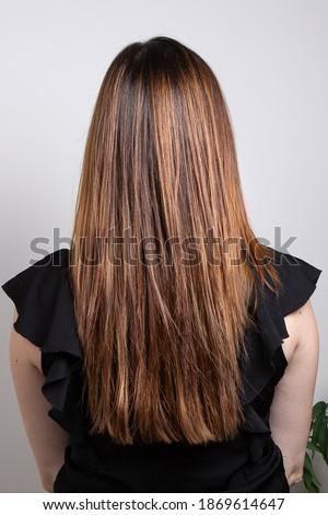 Ritratto bella donna lungo capelli castani bianco ragazza Foto d'archivio © deandrobot