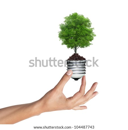 Stockfoto: Boom · gloeilamp · vrouw · hand · witte · groene · energie