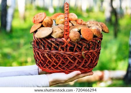 Stock photo: Closeup shot of female hands that hold the big basket full of mu