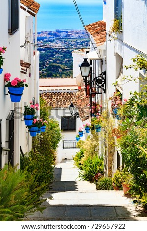 closeup shot of street of flowers and plant pots mijas andaluc stock photo © nobilior