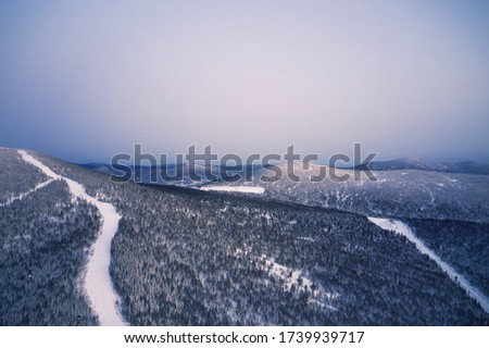 Flight over snowy mountain coniferous forest at sunset. Clear su Stock photo © vlad_star