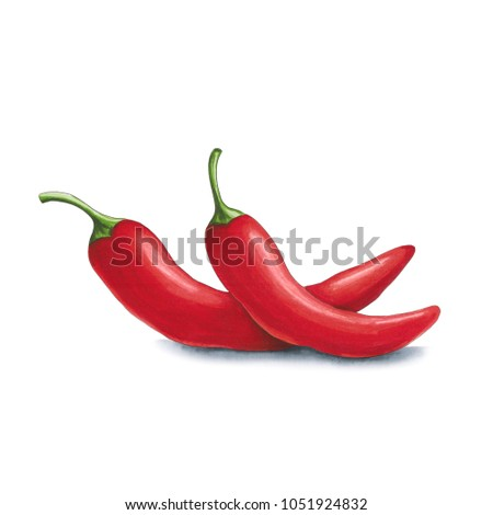 Chili pepper on a white background. Sketch done in alcohol marke Stock photo © user_10003441