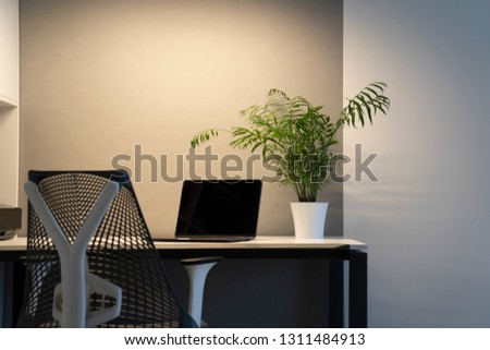 Up-to-date new black laptop, green flowerpot on an office desk, orthopedic chair - comfortable works Stock photo © artjazz