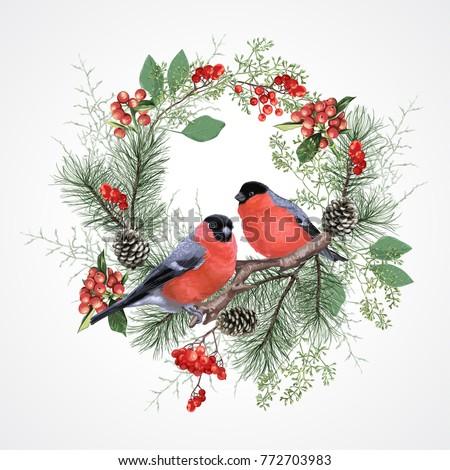 Dois aves ramo vermelho isolado Foto stock © Lady-Luck
