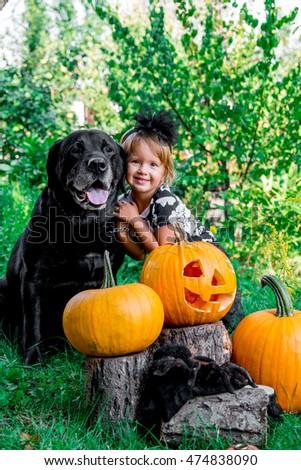 Хэллоуин · собака · красный · зла · костюм - Сток-фото © illia