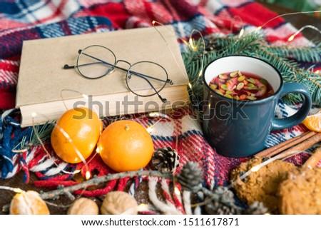 Book with eyeglasses, mug of hot herbal tea, two mandarines, cones and cookies Stock photo © pressmaster