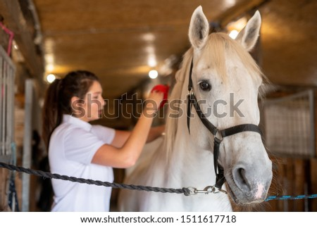 女性 · ジョッキー · ライディング · 馬 · 納屋 · 女性 - ストックフォト © pressmaster