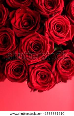 Lüks buket kırmızı gül çiçekler çiçeklenme flora Stok fotoğraf © Anneleven