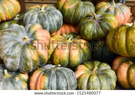 Muscade de Provence cucurbita pumpkin pumpkins from autumn harve Stock photo © juniart