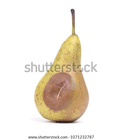 close up of a pear with white area of fungus growing on it sele stock photo © michaklootwijk