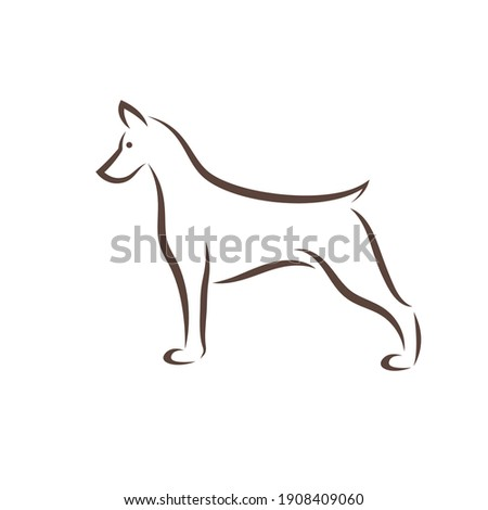 Isolated black outline head of Miniature Pinscher on white background. Line cartoon breed dog portra Stock photo © olkita
