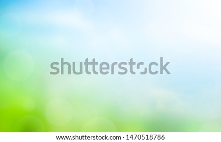 Agricultural field in the early spring on a background of forest, Europe. Stock photo © FreeProd