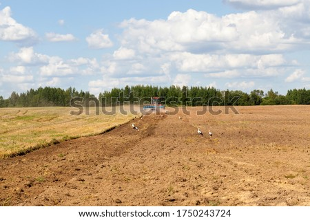 Agricultural field after harvesting and part of the field plowed of tractor under sowing works . Stock photo © artjazz