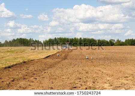 農業の フィールド 収穫 トラクター 種蒔き 準備 ストックフォト © artjazz