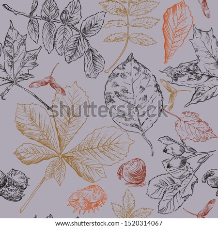Autumn Illustration with Colorful Leaves and Chestnut and Lettering on Vintage Wood Background. Autu Stock photo © articular