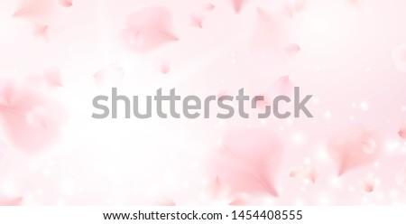 Sakura voador vetor flor-de-rosa pétalas Foto stock © Iaroslava